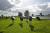 FrieslandCampina gaat duurzame melkveehouders belonen
