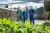 Grootschalige landelijke actie voor duurzamer eten van start