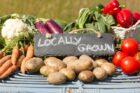 Kleine ondernemers jagen verduurzaming van de voedselsector aan