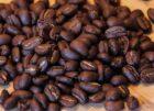Benantwoording kamervragen over mensonterende omstandigheden bij de teelt van koffie in Brazilië