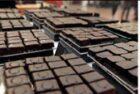 Chocoa 2017: waar komt onze chocolade vandaan?