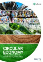 Circular Economy Potential: Ecofys and WBCSD Present Global Emissions Flows For 8 Key Materials