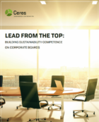 New Report Highlights Leading Corporate Practices For Sustainability-Competent Boards