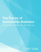 New BSR Report: The Future of Sustainable Business