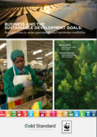 """Business and the SDGs: Best practices to seize opportunity and maximise credibility"""