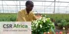 Lancering website CSR Africa tijdens IFTEX