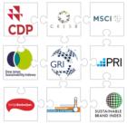 Meten voortgang MVO bij Nederlands bedrijfsleven een puzzel met (te) veel stukjes