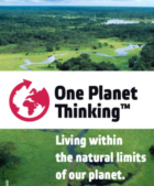 Earth Overshoot Day: Vergeet koolstofbudgetten, we hebben een budget voor de aarde nodig
