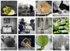 Groene Ster Nederland wint Karel de Vos Duurzaamheid award op Horecava 2019