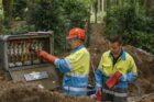 Liander en Shell sluiten contract voor vergroenen van netverliezen
