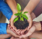 Van 'black hole' naar gidsland sociaal ondernemerschap