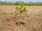 Kleding marktplaats United Wardrobe plant boom voor elk verkocht kledingstuk
