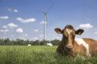 FrieslandCampina: jaarlijks 24 miljoen euro extra naar boeren voor duurzaamheid