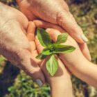 Mastercard en partners lanceren Priceless Planet Coalition om klimaatverandering tegen te gaan