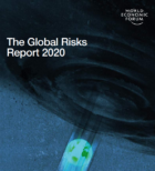 Global Risks Report 2020: Burning Planet: Climate Fires and Political Flame Wars Rage