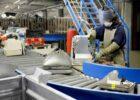 Nieuwe duurzaamheidsstrategie Renewi: recyclingpercentage van 75% binnen 5 jaar