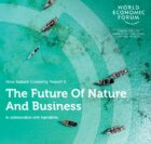 395 Million New Jobs by 2030 if Businesses Prioritize Nature, Says World Economic Forum