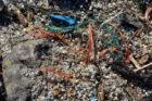 Conferentie over aanpak vervuiling plastic korrels in de haven van Rotterdam