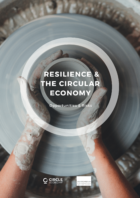 Will the circular economy transition also boost resilience?
