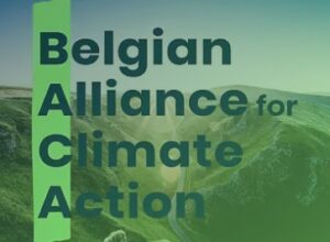 Belgian Alliance