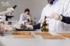 BlueCity opent eerste circulair verbouwde biolab ter wereld in voormalig Tropicana