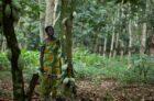 IJsicoon Ben & Jerry's introduceert in samenwerking met Fairtrade holistische benadering tot leefbaar inkomen voor cacaoboeren