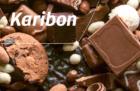 Bunge Loders Croklaan lanceert Karibon: de eerste shea-only premium Cocoa Butter Equivalent