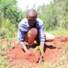 Initiatief Rabobank pakt wereldwijde CO2-uitdaging aan en verbetert positie boeren in ontwikkelende landen