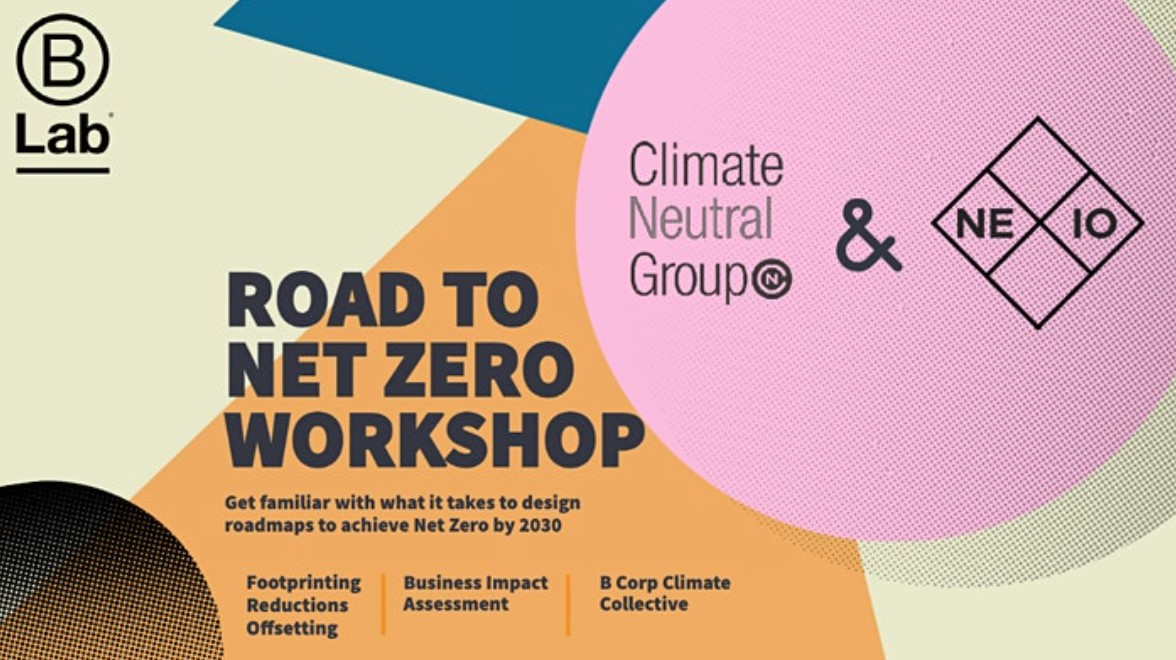 Online workshop Net Zero by 2030
