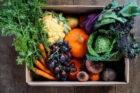 Maaltijdboxbedrijf Boerschappen en verspillingsplatform Instock lanceren Rescue Box tegen voedselverspilling