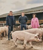 Jan Zandbergen Group en Udea slaan handen ineen voor bio-vlees
