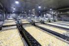Lamb Weston / Meijer (LW/M) kondigt plannen bouw van een nieuwe duurzame fritesfabriek aan