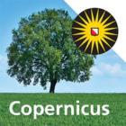 MVO Nederland en Copernicus Instituut werken samen aan transitie naar nieuwe, circulaire economie