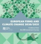 New EIB study: How do EU and US firms perceive and invest in climate change?