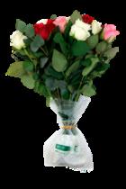 Arrive Alive® Eco – de duurzame oplossing voor conditionering bloemen tijdens transport