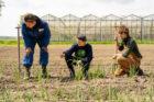 Groei biodynamische landbouw zet door
